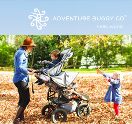 Top 10 Baby Strollers for Triplets - Reviews & Products